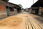 picture of longhouse  - traditional bornoe long house and headhunter village - JPG