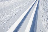 picture of nordic skiing  - cross country skiing tracks in the winter - JPG