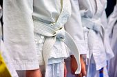 Concept Karate, Martial Arts. Construction Of Students In The Hall Before Training. Kimono, Differen poster