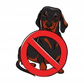 Dog. Black Dachshund With A Stop Sign. Stop Dog. Hand-drawn Dog. Realistically Painted Dachshund. Si poster