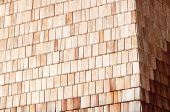 Sunny Alpine Wooden Clapboard Wall
