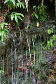Tiny Hana Falls