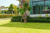Green Lawn, The Front Lawn For Background, Garden Landscape Design With Modern House., Landscaped Fo poster