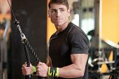 Young Fit Muscular Man Close Up Doing Triceps Pull Down Rope Extension Exercise In Modern Fitness Ce poster