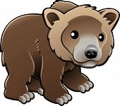 Lindo oso Grizzly Vector Illustration