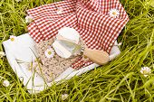 Soft Blue Cheese And A Knife On Green Grass. Dairy Products For A Healthy Diet In Nature And Cracker poster