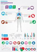 Medical Infographics. Human Body With Internal Organs