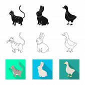 Vector Illustration Of Breeding And Kitchen  Symbol. Set Of Breeding And Organic  Vector Icon For St poster