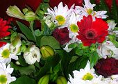 pic of flower arrangement  - Bouquet of red and white flowers - JPG