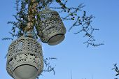 Oriental lamps on tree and blue sky