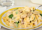 Cheesy Macaroni, Chicken And Broccoli