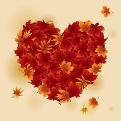 Autumn Red Maple Leaves Heart