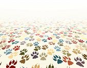 stock photo of paw-print  - Editable vector illustration of dog paw prints - JPG