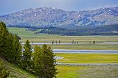 Scenic Yellowstone Park