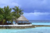 picture of dhoni  - Restaurant on the beach in the Maldives Indian Ocean - JPG