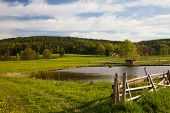 picture of hayfield  - idyllic landscape in springtime with fish farming lake - JPG