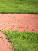 Beautiful Green Lawns Perfectly Cut For Background