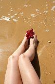 image of sand lilies  - woman - JPG