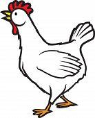 Walking Chicken
