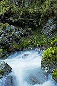 Rocky Creek Scenery