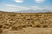 Mojave Desert Us14