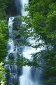 Waterfall In Cascades Mountains