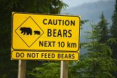Caution Bears Sign