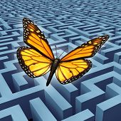 foto of monarch  - Believe in yourself concept and metaphore for success with a monarch butterfly on a journey flying over a complicated maze or labyrinth to rise above adversity and obstacles as a human lifestyle and business idea - JPG