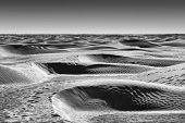 Dunes Of Sahara Desert Black And White