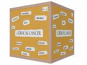 Cervical Cancer 3D Cube Corkboard Word Concept