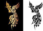 phoenix bird phoenix pattern passion orange night