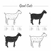 picture of flank steak  - Illustration of Goat meat cut scheme - JPG