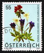 Postage Stamp Austria 2007 Flowers