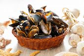 Cooked fresh mussels in basket