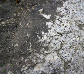 Bedrock Background