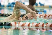 older competitive adult swimming laps in pool
