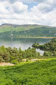 Brandelhow Bay Derwent water Lake District Cumbria England UK