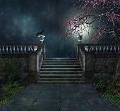 mysterious park