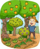 Illustration of a Farmer in an Orchard Gazing at His Crops