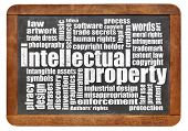 intellectual property word cloud