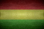 Closeup Screen Bolivia Flag Concept On Pvc Leather For Background