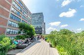 High Line Park