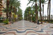 Alicante Street