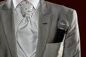 Man Standing With Microphone In  Pocket