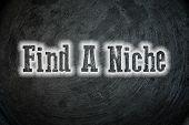Find A Niche Concept