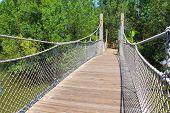 Long suspended bridge