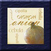 Onion Kitchen