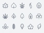 pic of elm  - Leaf icon - JPG