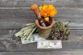 Ancient Rusty Iron Mortar And Various Medical Herbs With Dollar Money