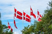 Six Danish Flags On Flagpoles